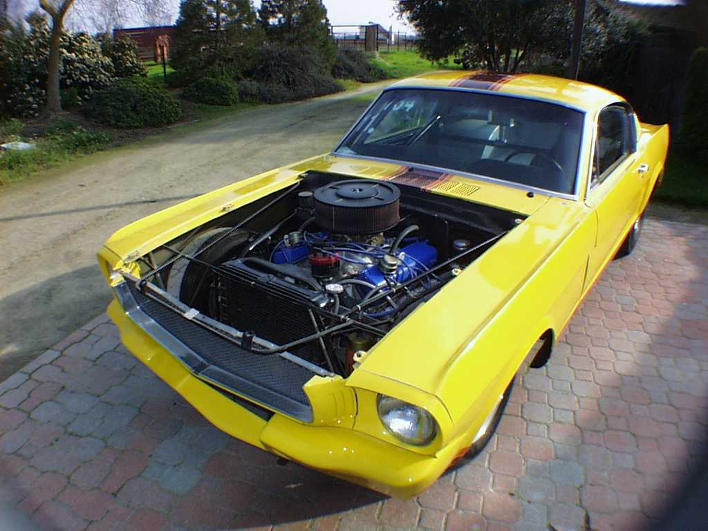 1968 Firebird For Sale Craigslist also Ford Suspension Parts 4 Link Ford Coil Over Rear Suspension Systems additionally 310714815680 further 214546574 Agria 4800 Instruction Book likewise 535563 Mustang Ii Front End. on 65 mustang parts